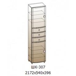 Шкаф 2172х540х396